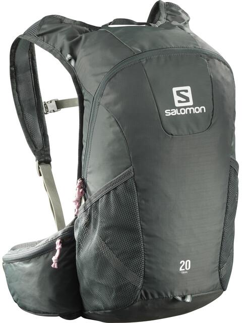 Salomon Trail 20 Backpack Urban Chic/Shadow